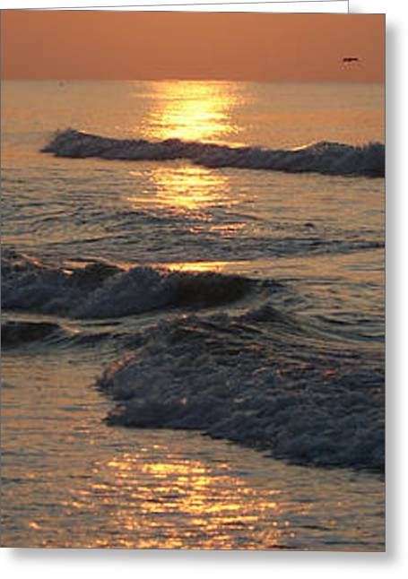 Galveston Greeting Cards - Sunrise Greeting Card by Michael Davis