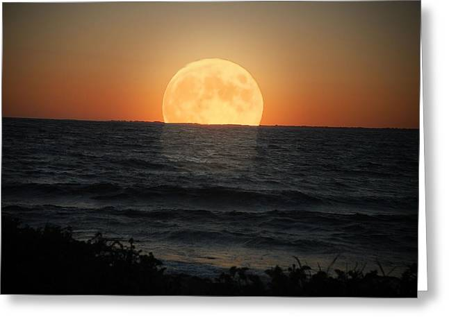 Tammy Collins Greeting Cards - Sunrise Moon Greeting Card by Tammy Collins