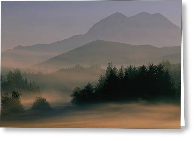 Misty Pine Photography Greeting Cards - Sunrise, Mount Rainier Mount Rainier Greeting Card by Panoramic Images