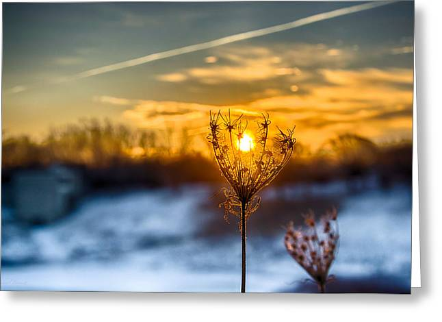 Hdr Landscape Greeting Cards - Sunrise North of Chicago 12-14-13-2 Greeting Card by Michael  Bennett