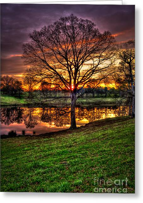 Southern Homes Greeting Cards - Sunrise Oak Reflections Greeting Card by Reid Callaway