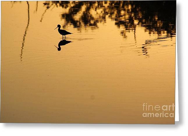 Print Photographs Greeting Cards - Sunrise On A Stilt 3 Greeting Card by Chuck  Hicks
