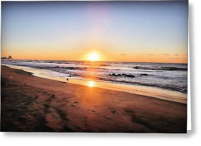 Stein Greeting Cards - Sunrise on beach Longport NJ Greeting Card by Valerie Stein