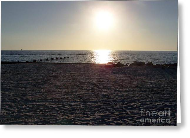 Esem8chart.com Greeting Cards - Sunrise On Clearwater Greeting Card by Sarah Holenstein