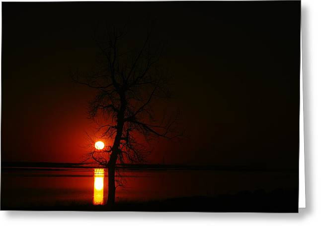 Wildlife Refuge. Greeting Cards - Sunrise On Medicine Lake Montana Greeting Card by Jeff  Swan
