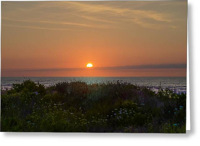 Sunrise On Beach Greeting Cards - Sunrise on the Avalon  Beach Dunes Greeting Card by Bill Cannon