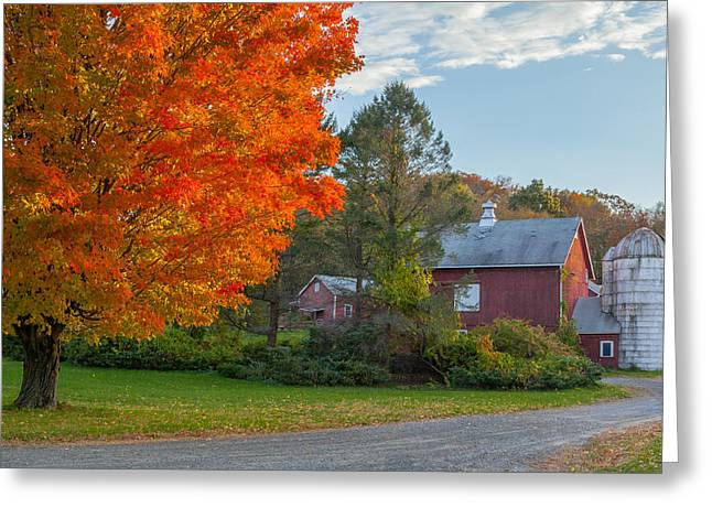 Sunrise on the farm Greeting Card by Bill  Wakeley