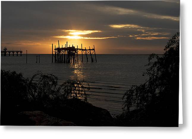 Cedar Key Greeting Cards - Sunrise on the Gulf Greeting Card by Penny Meyers