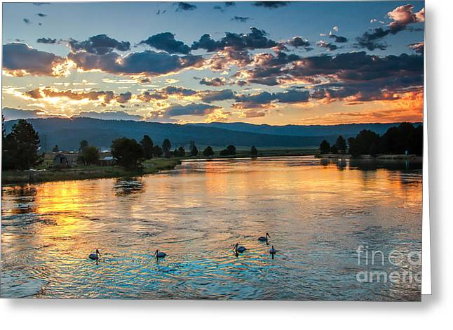 Scenic River Photography Greeting Cards - Sunrise On The North Payette River Greeting Card by Robert Bales