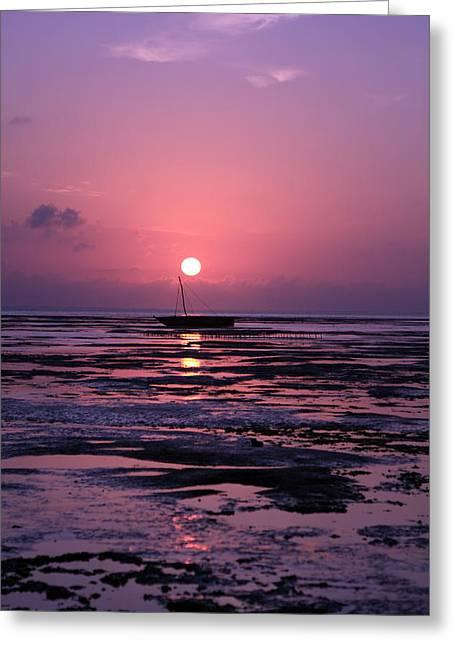 Moran Greeting Cards - Zanzibar Island Sunrise Greeting Card by Aidan Moran