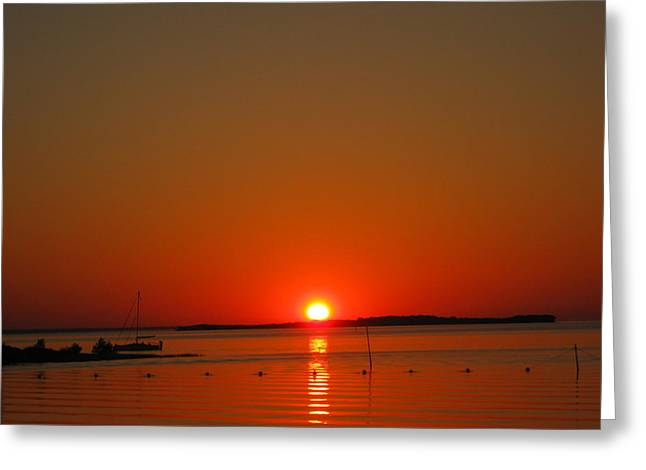 Sunrise Over Cedar Key Greeting Card by Amanda Wilson