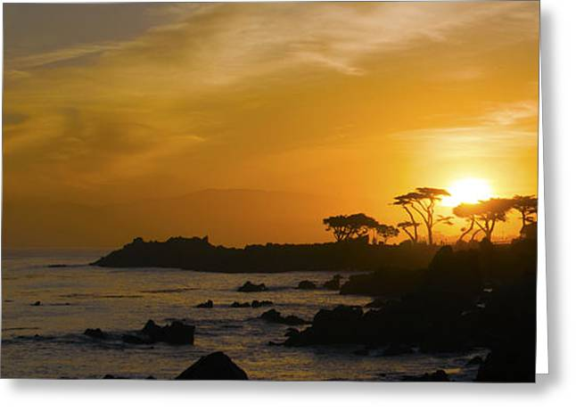 Sunrise Over California Greeting Cards - Sunrise Over Monterey California  Greeting Card by Barbara Snyder