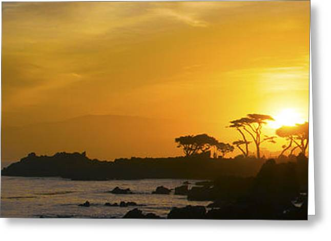 Sunrise Over California Greeting Cards - Sunrise Over Monterey California Wide Greeting Card by Barbara Snyder