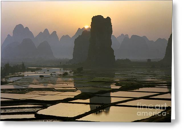 Rice Paddy Greeting Cards - Sunrise over rice paddies Greeting Card by King Wu