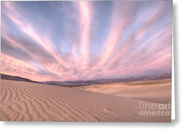 Sand Dunes National Park Greeting Cards - Sunrise over Sand Dunes Greeting Card by Juli Scalzi