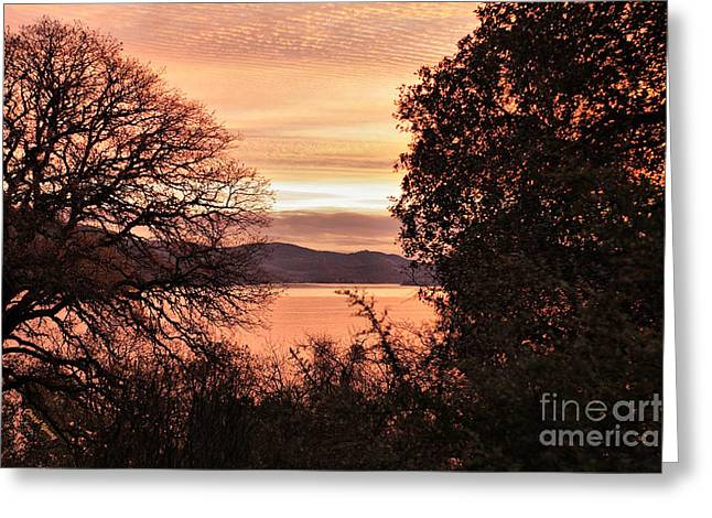 Sunrise Over California Greeting Cards - Sunrise over the Lake 2 Greeting Card by Cheryl Young