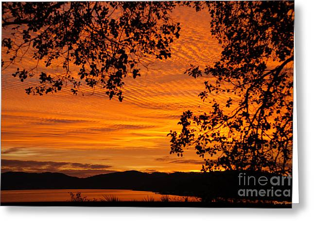 Boutique Design Greeting Cards - Sunrise over the Lake Greeting Card by Cheryl Young