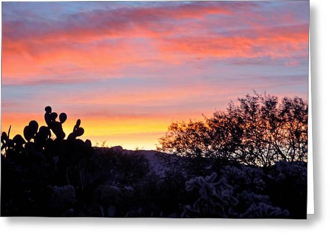 Jon Van Gilder Greeting Cards - Sunrise Over The Sonoran Desert Greeting Card by Jon Van Gilder