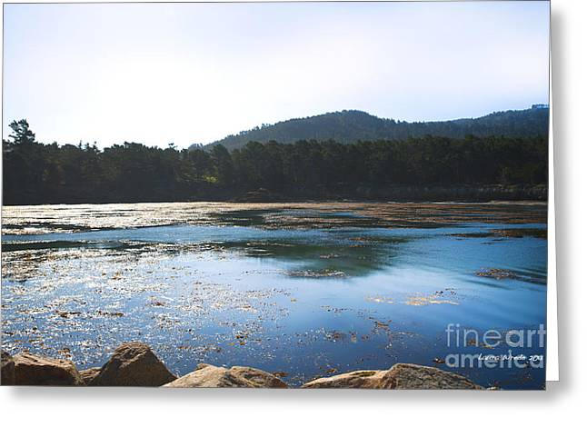 Best Sellers -  - California Tourist Spots Greeting Cards - Sunrise Over Whalers Cove at Point Lobos California Greeting Card by Artist and Photographer Laura Wrede