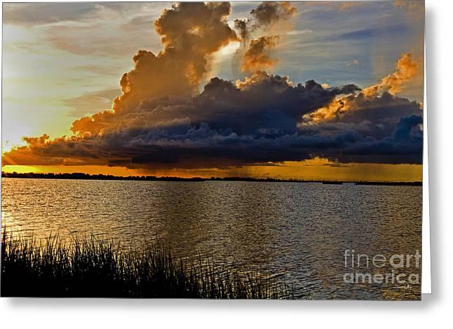 Louisiana Sunrise Greeting Cards - Sunrise Rain Greeting Card by Scott Pellegrin
