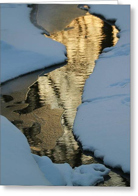 Reflections In River Greeting Cards - Sunrise Reflection Winter River Greeting Card by Dan Sproul