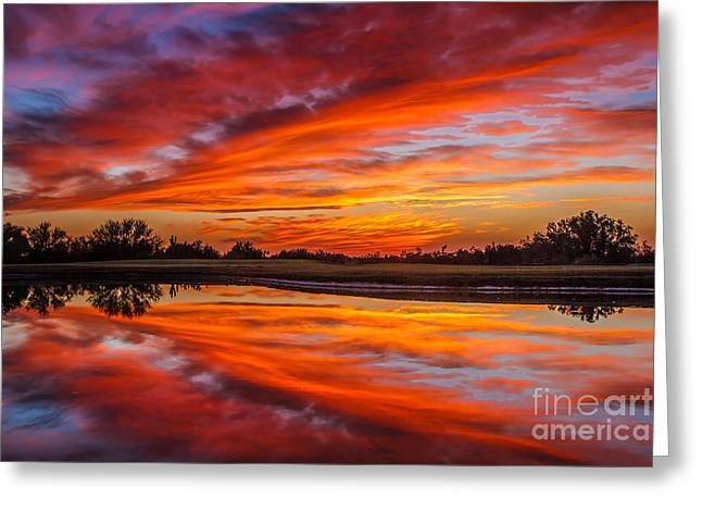 Sunrise Reflections Greeting Card by Robert Bales