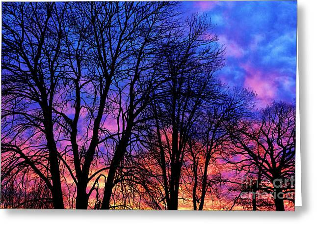 Colorful Cloud Formations Greeting Cards - Sunrise Silhouette Greeting Card by Thomas R Fletcher