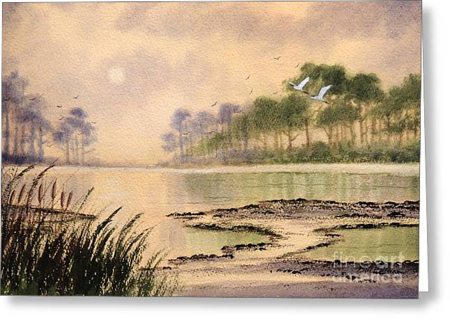 Wildlife Refuge. Paintings Greeting Cards - Sunrise - St Marks NWR Greeting Card by Bill Holkham