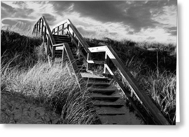 Panama City Beach Greeting Cards - Sunrise Stairs Greeting Card by Wynn Davis-Shanks