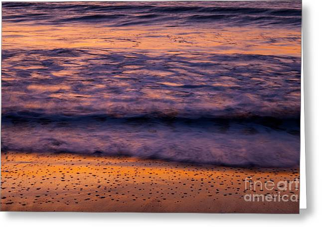 Beach Scenery Greeting Cards - Sunrise Surf Greeting Card by Susan Cole Kelly Impressions