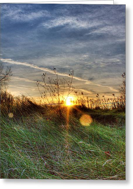 Rochester Artist Greeting Cards - Sunrise Through Grass Greeting Card by Tim Buisman