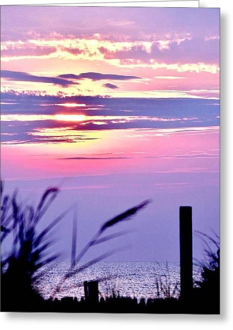 Beach Photo Greeting Cards - Sunrise Through the Dunes Greeting Card by Kim Bemis