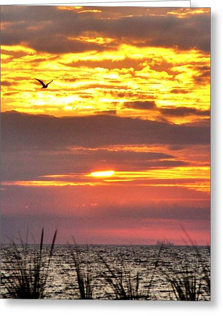 Beach Greeting Cards - Sunrise Through the Grass Greeting Card by Kim Bemis