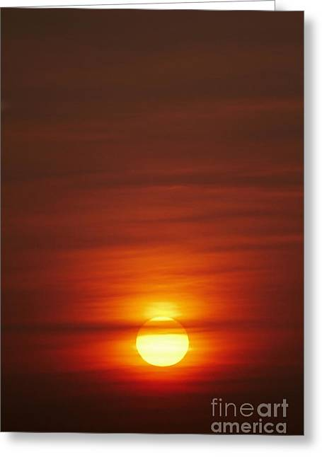 Sunrise Greeting Cards - Sunrise Greeting Card by Tony Cordoza