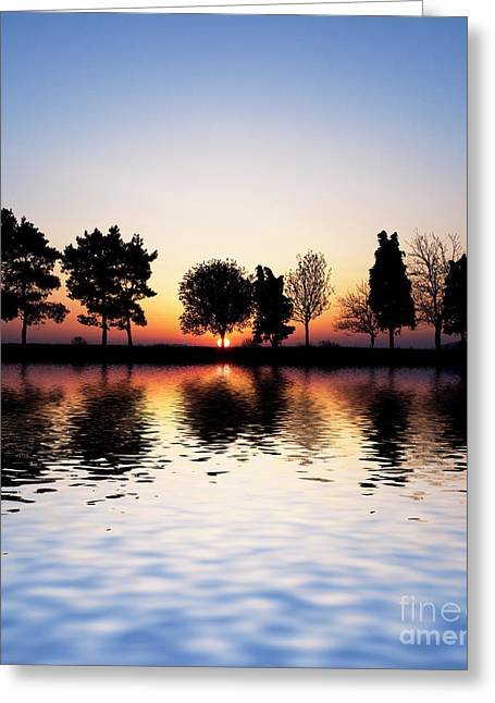Quercus Greeting Cards - Sunrise Tree Reflections Greeting Card by Tim Gainey