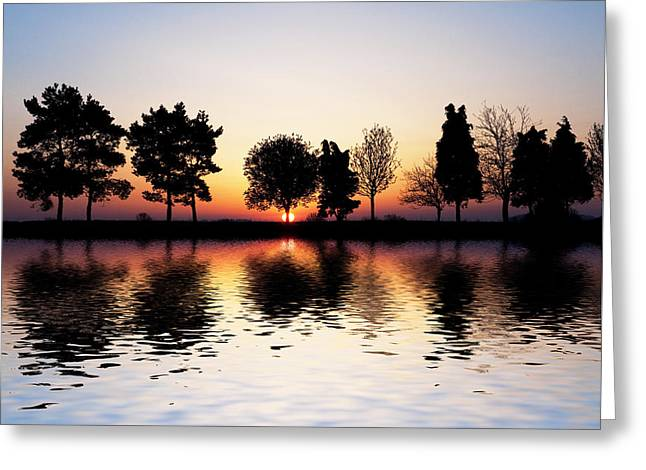 Bare Oak Tree Greeting Cards - Sunrise Tree Reflections Greeting Card by Tim Gainey