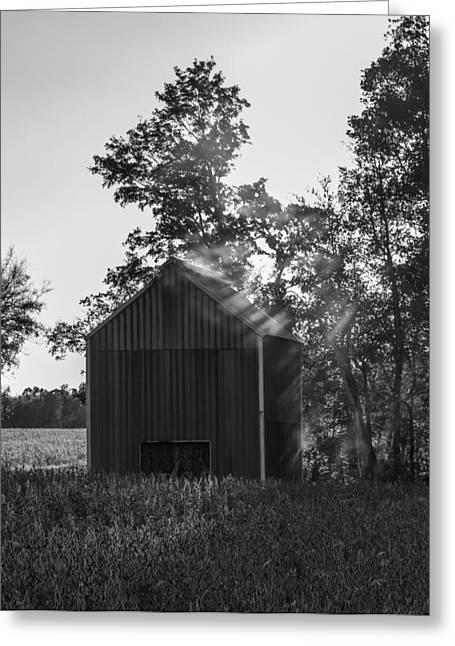 Western Ky Greeting Cards - Suns Rays Greeting Card by Amber Kresge