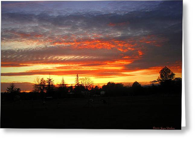 Sunset 02 28 13 Greeting Card by Joyce Dickens