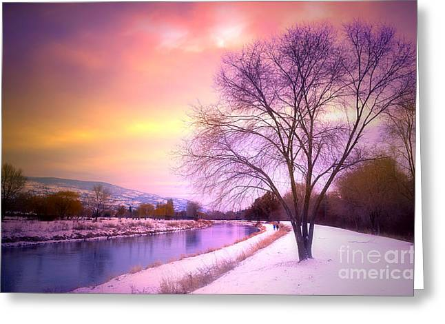 Snowy Evening Greeting Cards - Sunset along the River Channel Greeting Card by Tara Turner