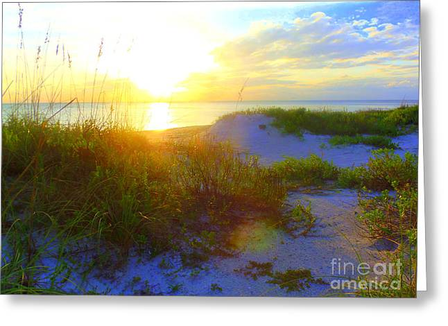 Your Choice Greeting Cards - Sunset and Sand Dunes Greeting Card by Lou Ann Bagnall