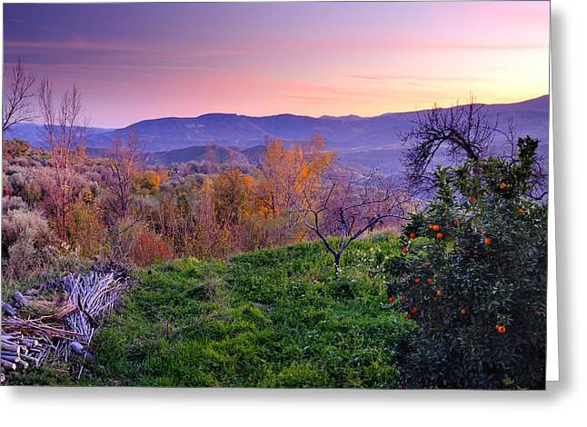 Granada Greeting Cards - Sunset at Alpujarras Greeting Card by Guido Montanes Castillo