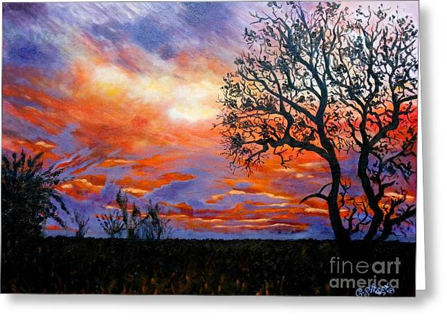 Caroline Street Greeting Cards - Sunset at Balule Greeting Card by Caroline Street