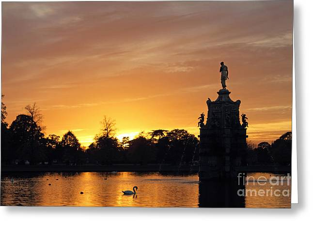 Pond In Park Greeting Cards - Sunset at Bushy Park UK Greeting Card by Julia Gavin