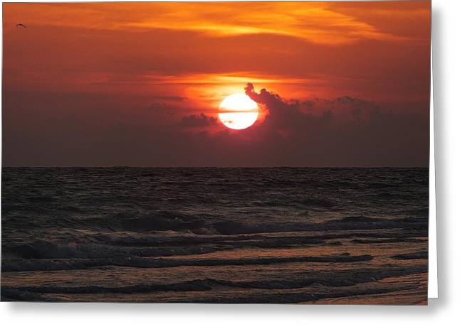 Tide Pyrography Greeting Cards - Sunset at Floridas Longboat Key Greeting Card by Alfred Stringer