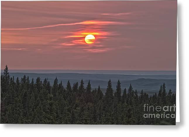 Cypress Hills Greeting Cards - Sunset At Horseshoe Canyon, Cypress Greeting Card by Alan Dyer