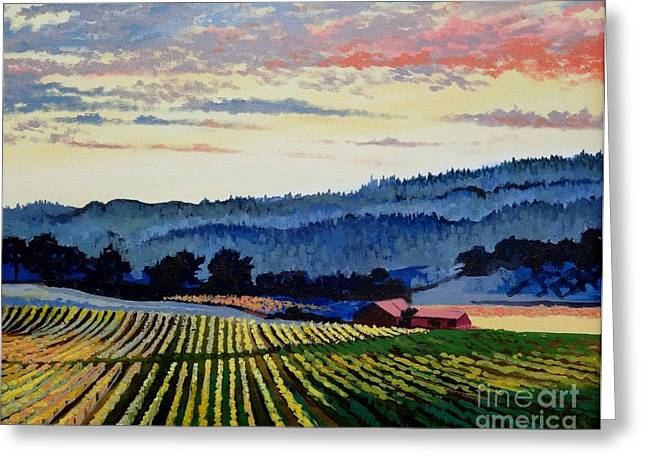 Sunset At Italian Winery Greeting Card by Sonny Chana