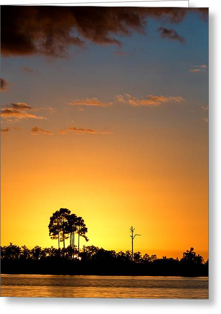 Sun Ray Greeting Cards - Sunset at Long Pine Key Vertical Greeting Card by Andres Leon