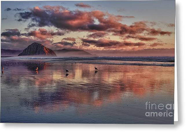 Morro Bay Greeting Cards - Sunset at Morro Strand Greeting Card by Beth Sargent