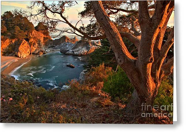 Big Sir California Greeting Cards - Sunset At Pfeiffer Burns Greeting Card by Adam Jewell