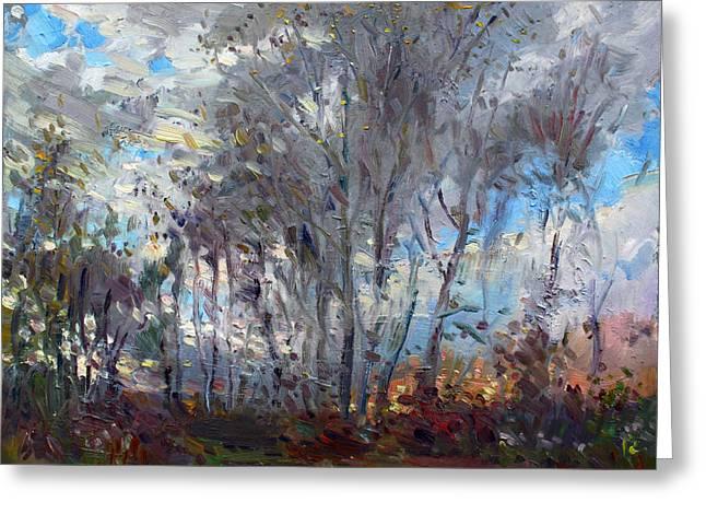 Fall Trees Greeting Cards - Sunset at Royal Park Greeting Card by Ylli Haruni
